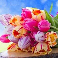 День мамы, или 8 марта по-британски