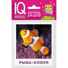 Обитатели морей и океанов  (Умный малыш. Набор карточек для детей)