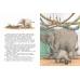 Слонёнок ищет брата: история долгого путешествия
